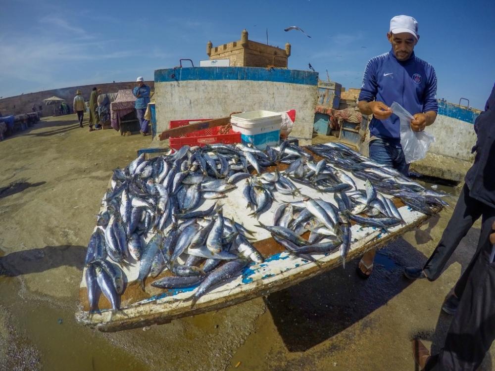 Essaouira, Maroko